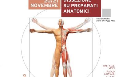 Implantologia avanzata: Corso di Dissezione su preparati anatomici